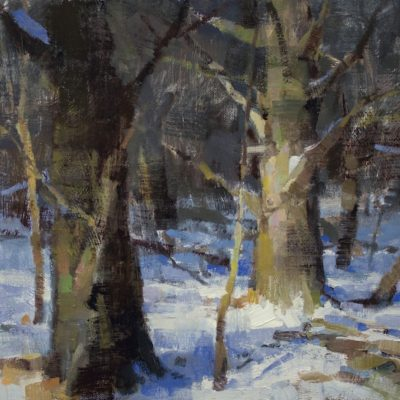 """""""Fresh Snow"""" Oil on canvas. 12x16 inches."""