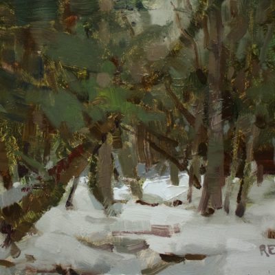 """""""Deep in VT Woods"""" oil on board. 8x10 inches."""