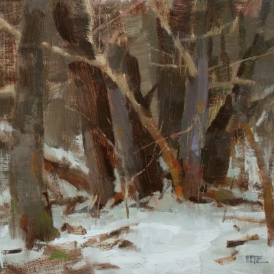 """Group of Trees"" oil on canvas. 12x14 inches. $900"