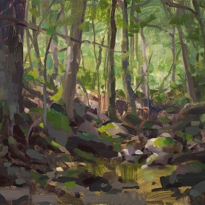 """""""Morning in the Woods"""" 12x16 in. oil on canvas. Available"""