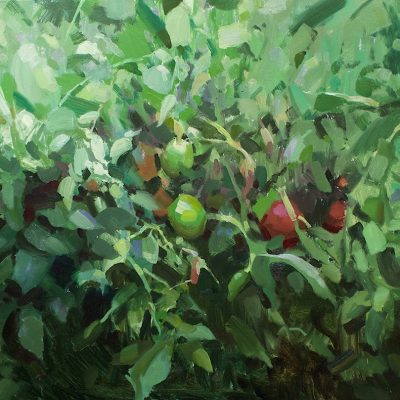 """""""Tomatoes"""" Oil on canvas. 24x36 inches. Available."""
