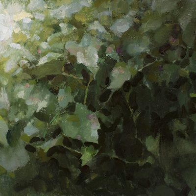 """""""Grapevines"""" 18x24 in. oil on board. Available"""