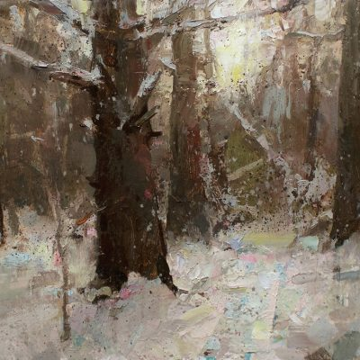 """""""Woods Trail"""" oil on board. 12x16 in. Available"""
