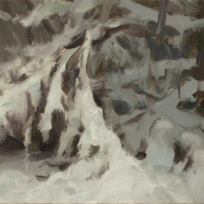 """""""Snowy Branches"""" oil on canvas. 8x10 in. available"""