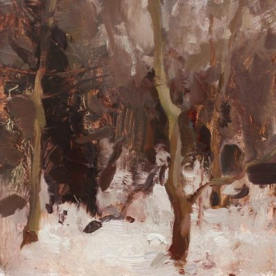 """""""Dark Overcast Woods"""" Oil on board. 7.25x6.5 in. available"""
