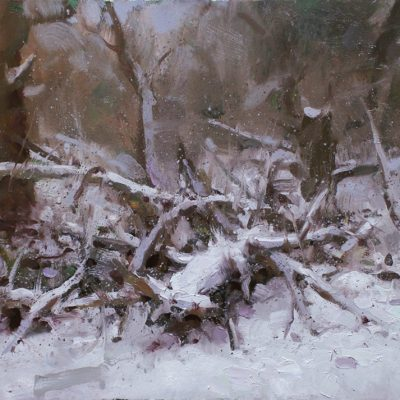 """""""Fallen Tree (evening)"""" oil on board. 15x24 in. available"""