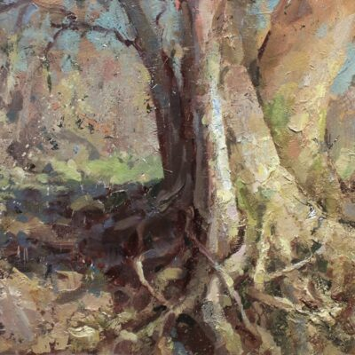 """Glen Cliff Tree"" 11.5x18 in. oil on board. available"